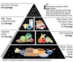 New Food Group Pyramid, Pyramid Of The Food Groups